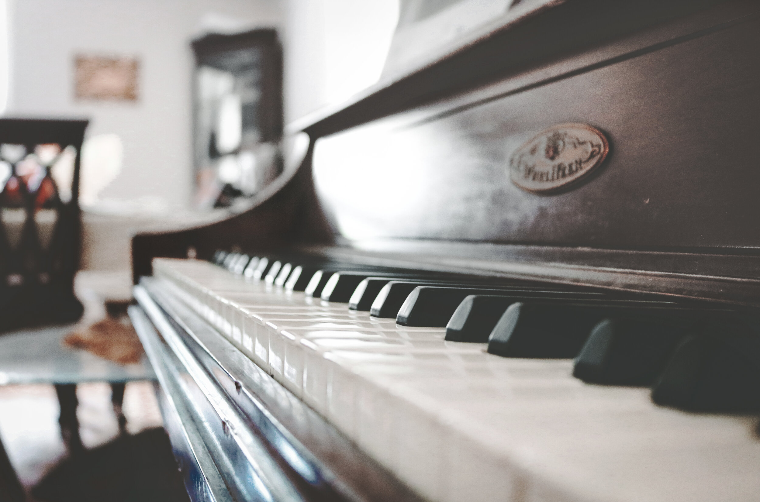 best piano lessons albany auckland north shore