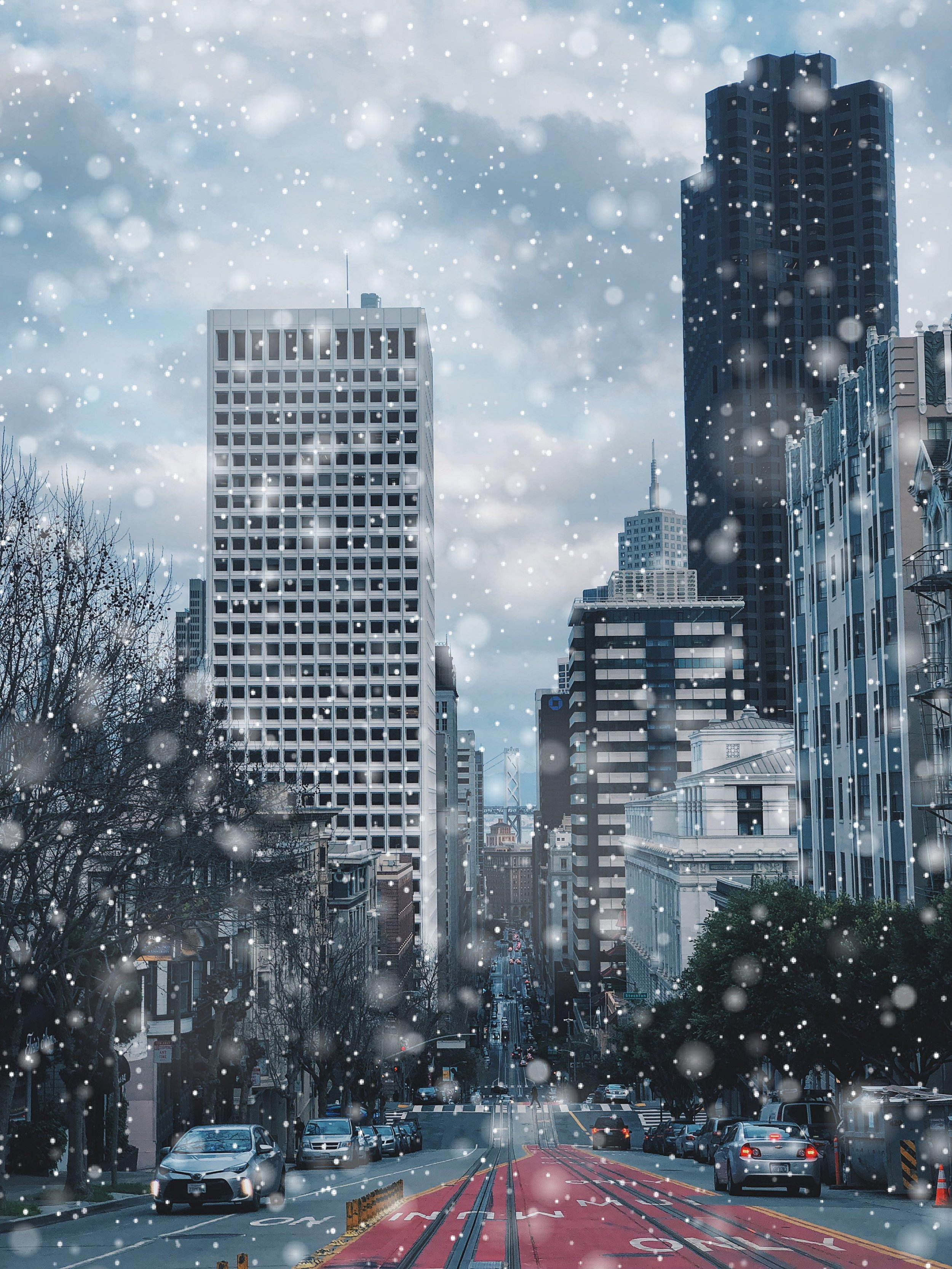 What if in the Bay Area, instead of rain we got snow?  -