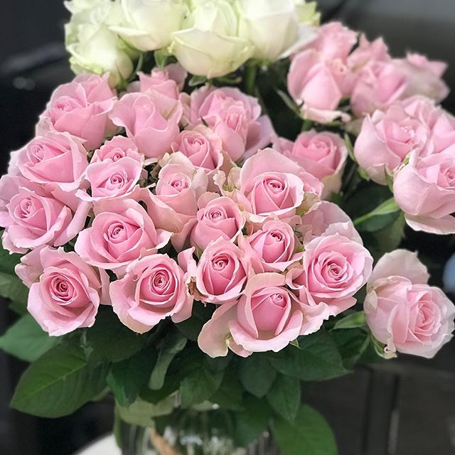 Love love love these stunning roses.  Locally grown #goldcoastflorist #goldcoastflowers #flowers #paradisepointflorist #roses #paradisepointflowers