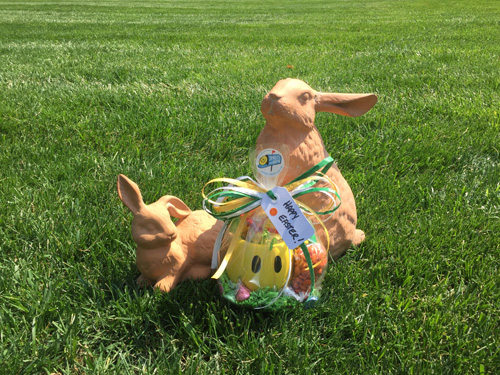 easter-home-page.jpg