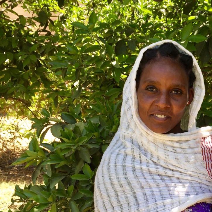 Miraf Hagos   Maternal Health Agent in Tewro