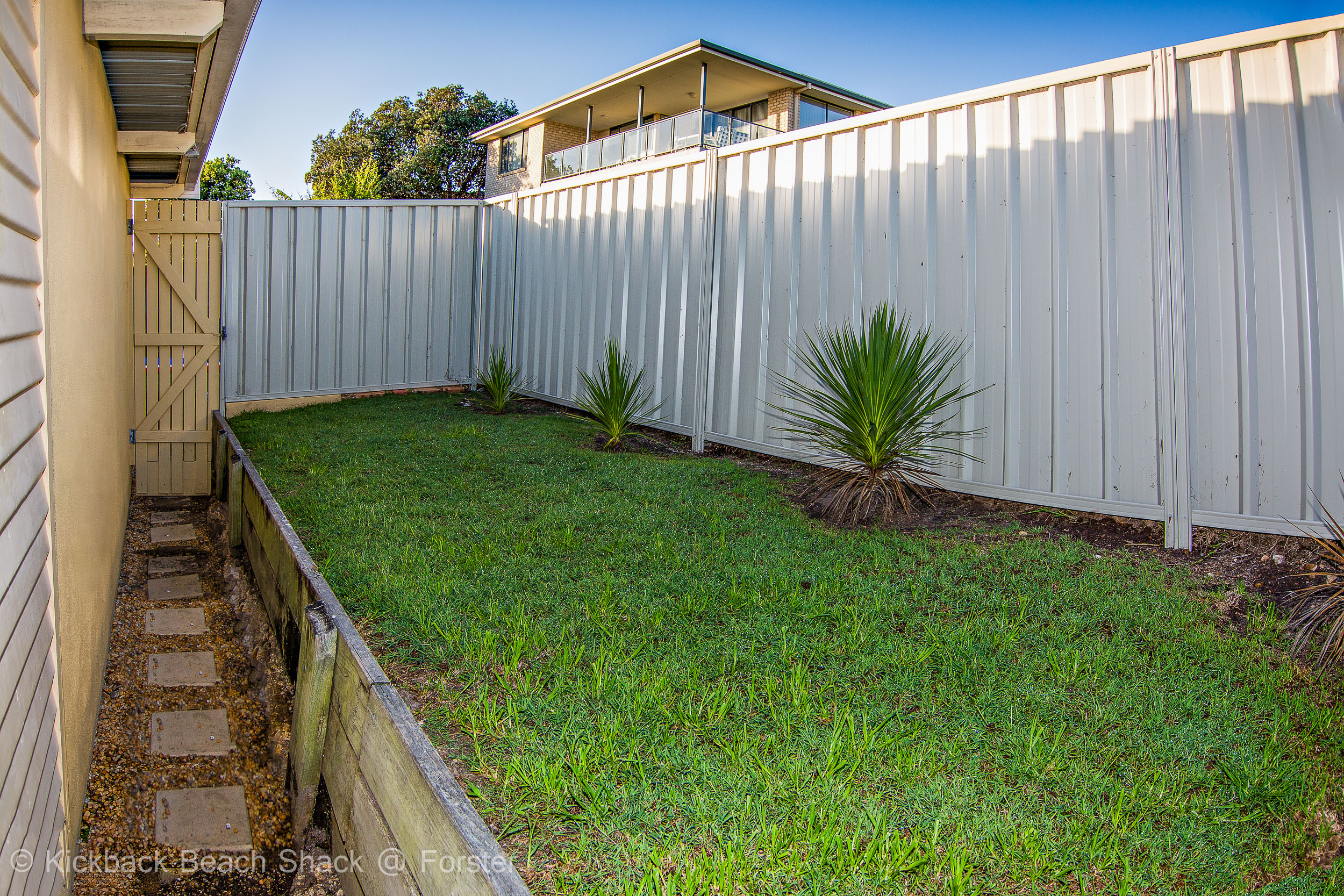 Forster-Accommodation-and-Pet-Friendly-Holiday-House-NSW-green-grass