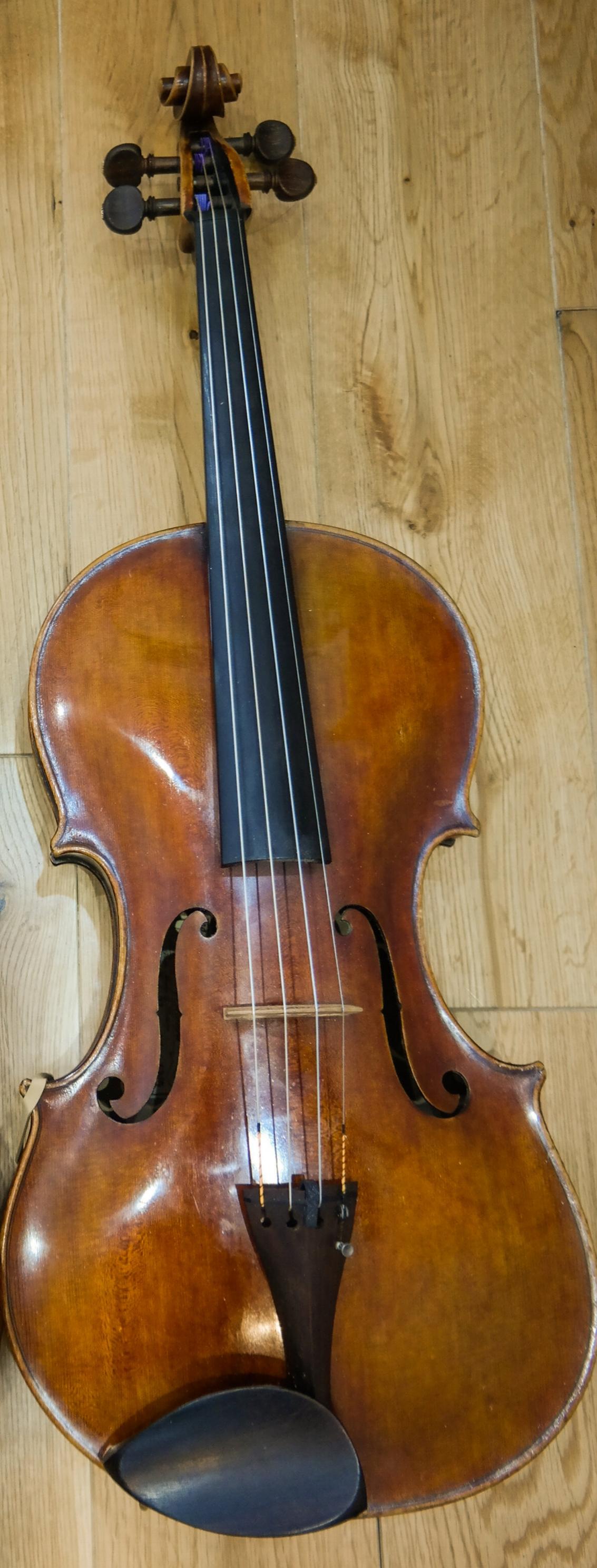 "The Viola itself - a 1995 David Milward instrument, 17"" back length."