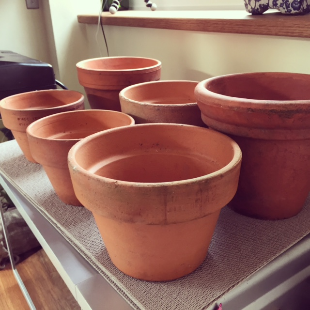 If dirty, wash your pots and let them dry out fully. (I did this a few days beforehand.)