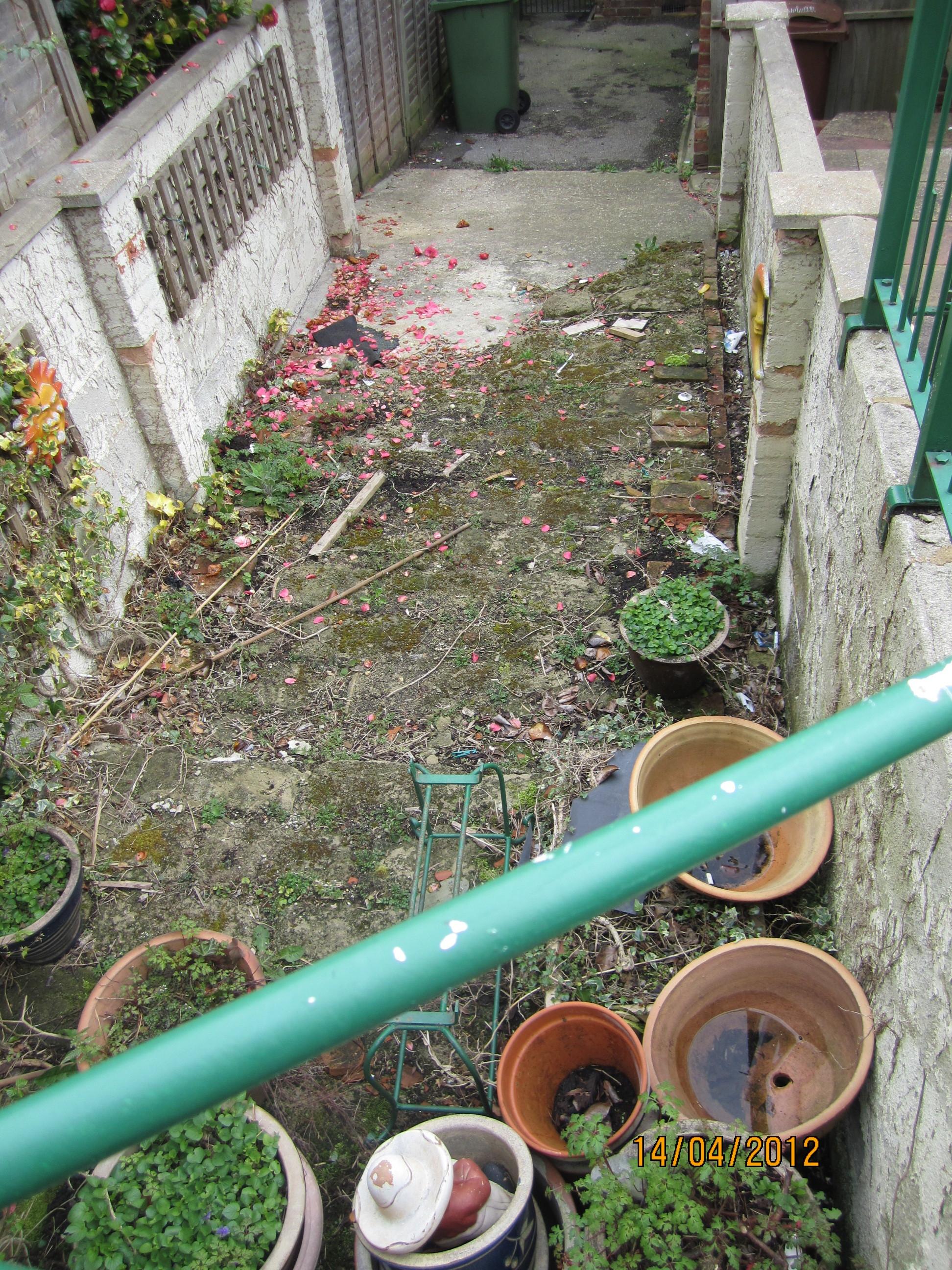 garden-overgrown.JPG
