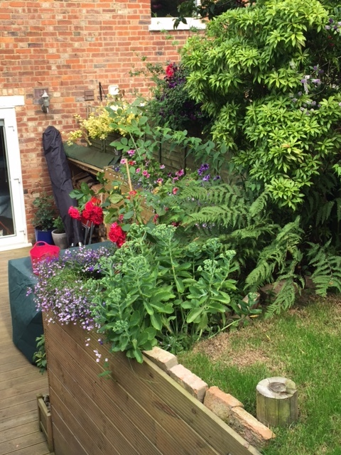 decking-flower-beds.JPG