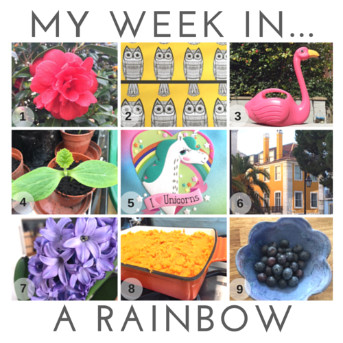 my-week-in-a-rainbow.png
