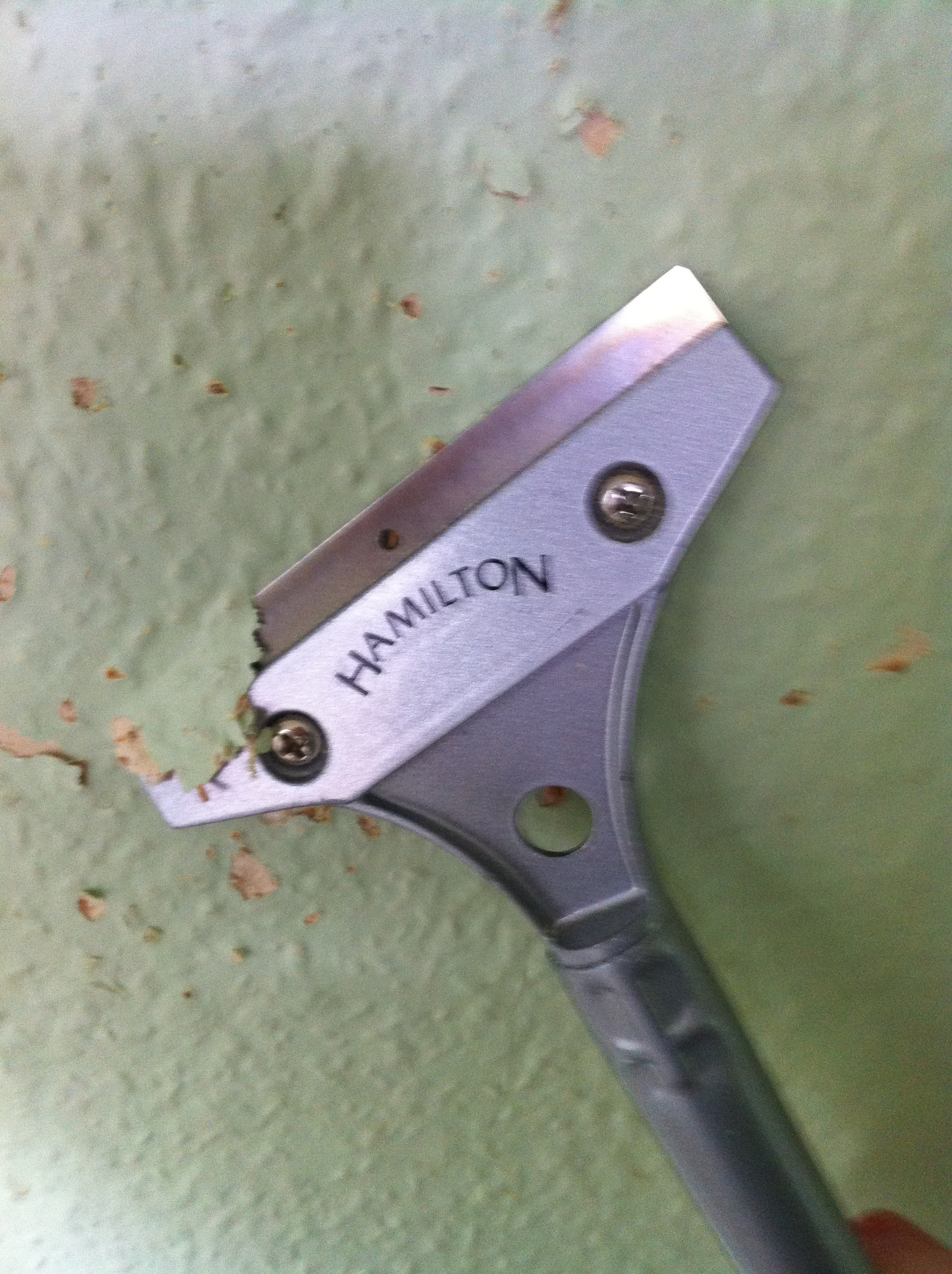 removing-the-woodchip.JPG