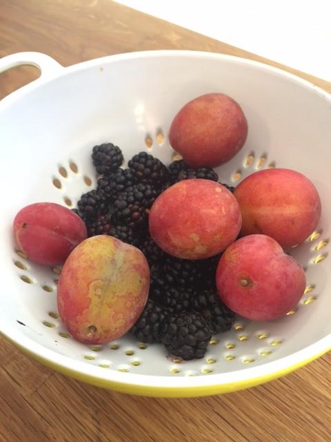 fruit-crumble.JPG