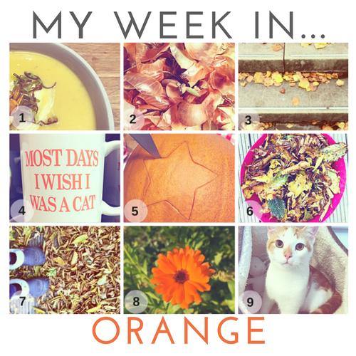 my-week-in-orange.png
