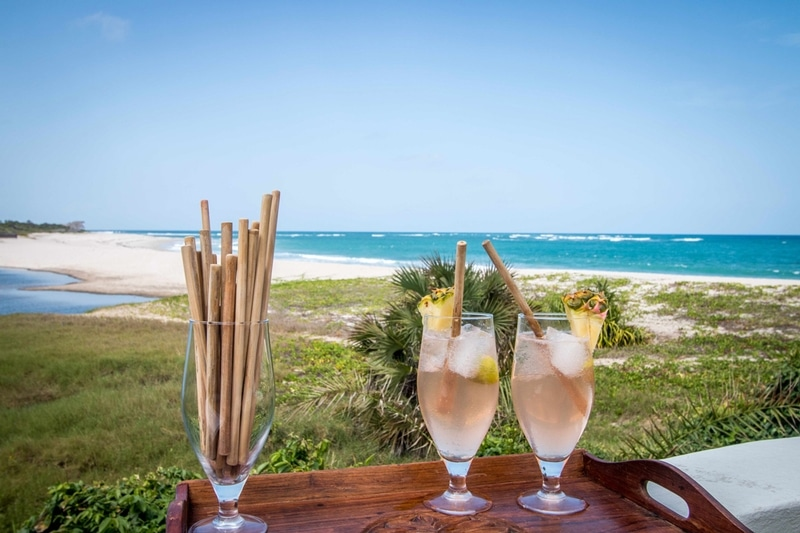 bamboo straws selous safari company.jpeg