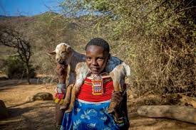 Naltwasha Leripe, the young woman's vision of her community in   Samburu County narrated by Lupita NNyongo'o in 'My Africa'.