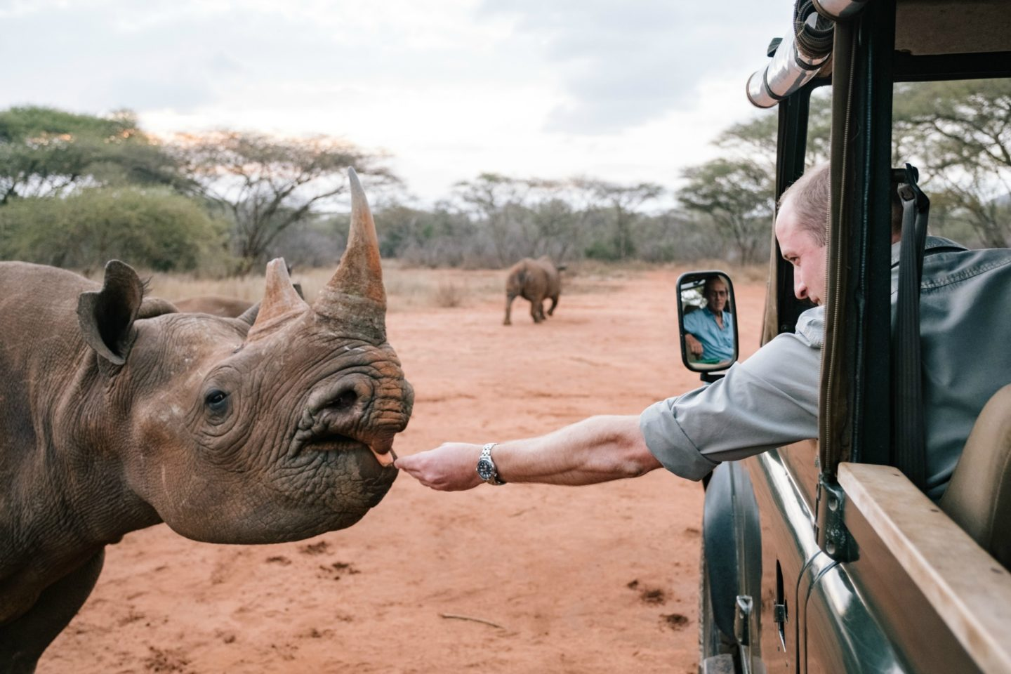 Source: HRH the Duke of Cambridge visited Mkomazi National Park to learn more about conservation efforts on the front line of a Tanzanian National Park. Mkomazi Rhino Sanctuary is working to establish a viable breeding population of 50 black rhino, whose offspring will be used to reinforce existing populations in Tanzania.  via Tusk.org