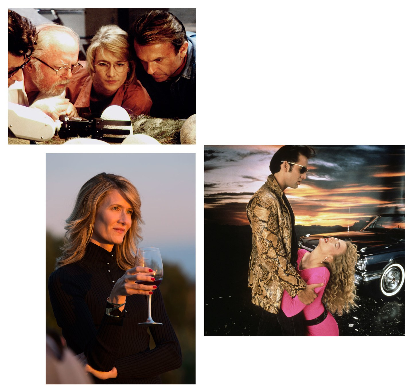 Clockwise from top, by Murray Close/Sygma/Getty Images, © Samuel Goldwyn/Everett Collection, by Hilary Bronwyn Gayle/HBO.  Laura Dern clockwise from top: with Jeff Goldblum, Richard Attenborough, and Sam Neill in 1993's  Jurassic Park ; with Nicolas Cage in 1990's  Wild at Heart ; in 2017's  Big Little Lies.