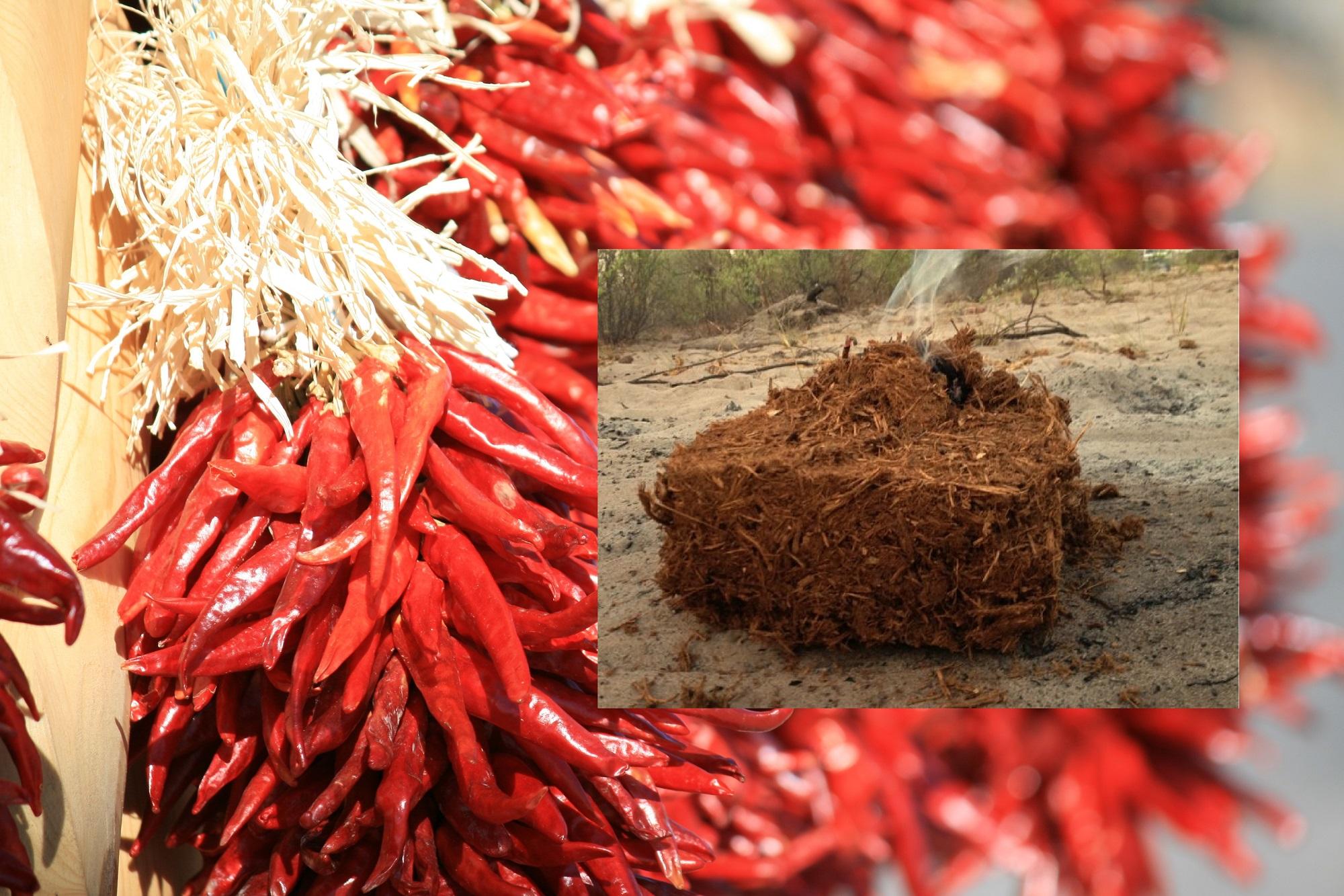 chili-elephant-dung-briquettes.jpg