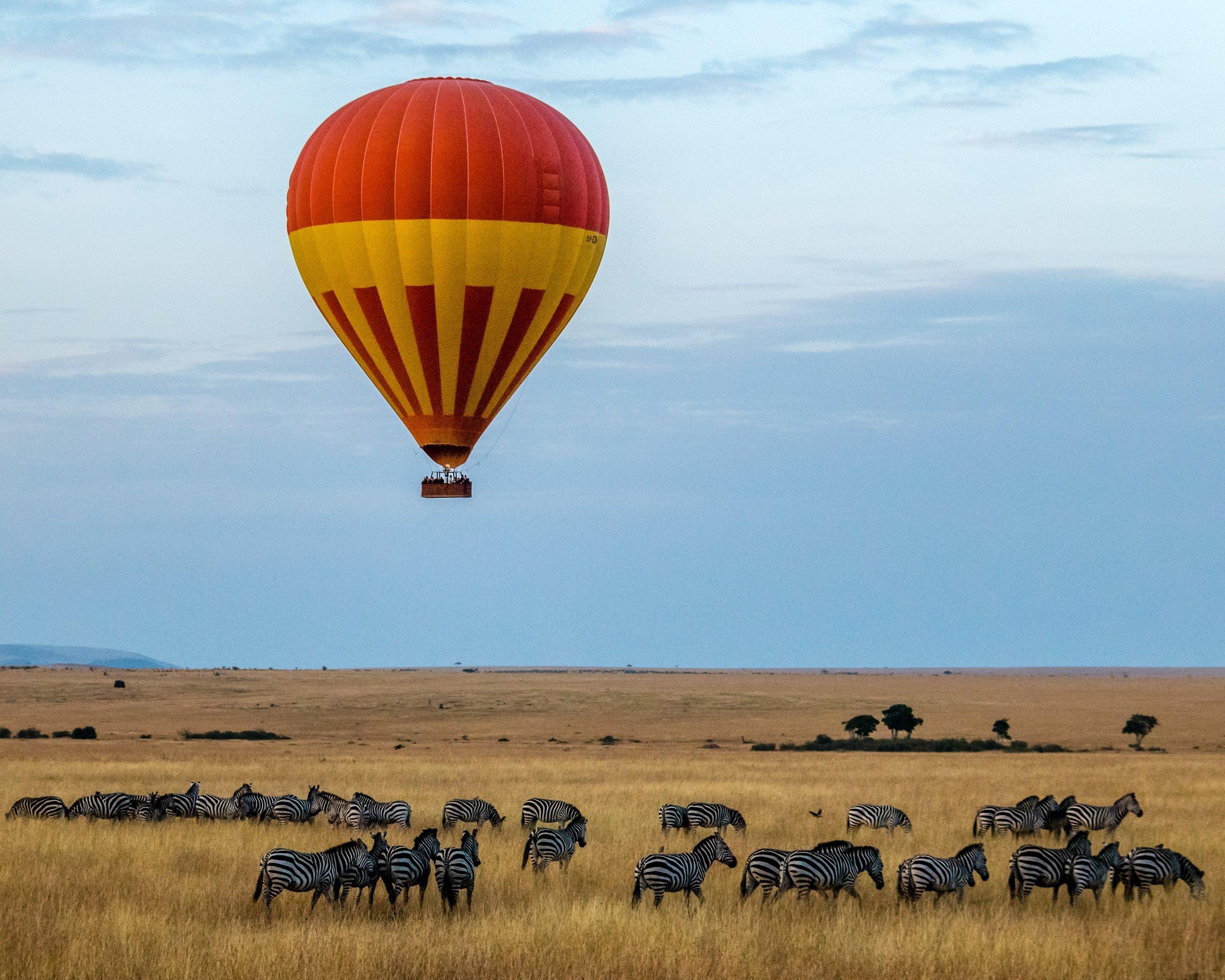 Maasai Mara National Reserve, Narok County, Kenya. Photo by  sutirta budiman  on  Unsplash