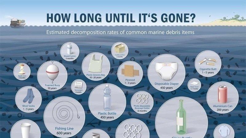 Change.org  Jay Inslee: Ban styrofoam and single use plastics in Washington State  petition.