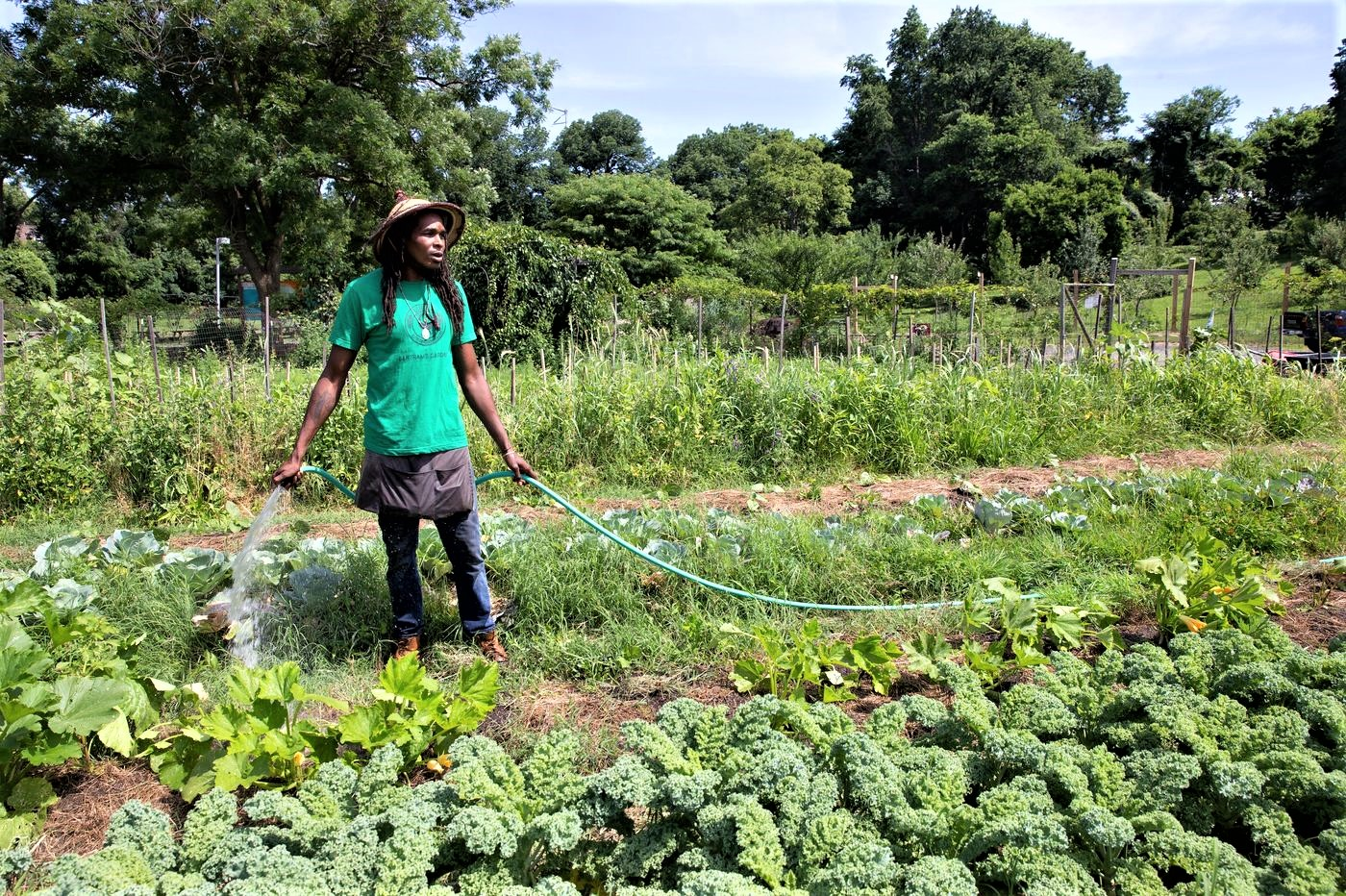Philly's urban farming plan could include hundreds, possibly thousands, of vacant lots . March 20, 2019. JESSICA GRIFFIN / FILE PHOTOGRAPH Philly.com