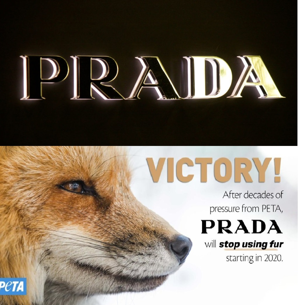 Prada-Goes-Fur-Free-v.jpg
