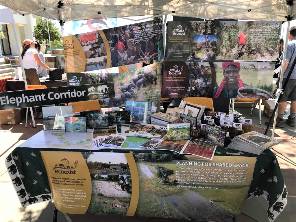 """The ECOEXIST  Project on Twitter.  Here's our beautiful stand with info on solutions 2 human #elephant #coexistence, & """"ElephantEconomy"""" products from #Okavango #Botswana #wildlife ..."""