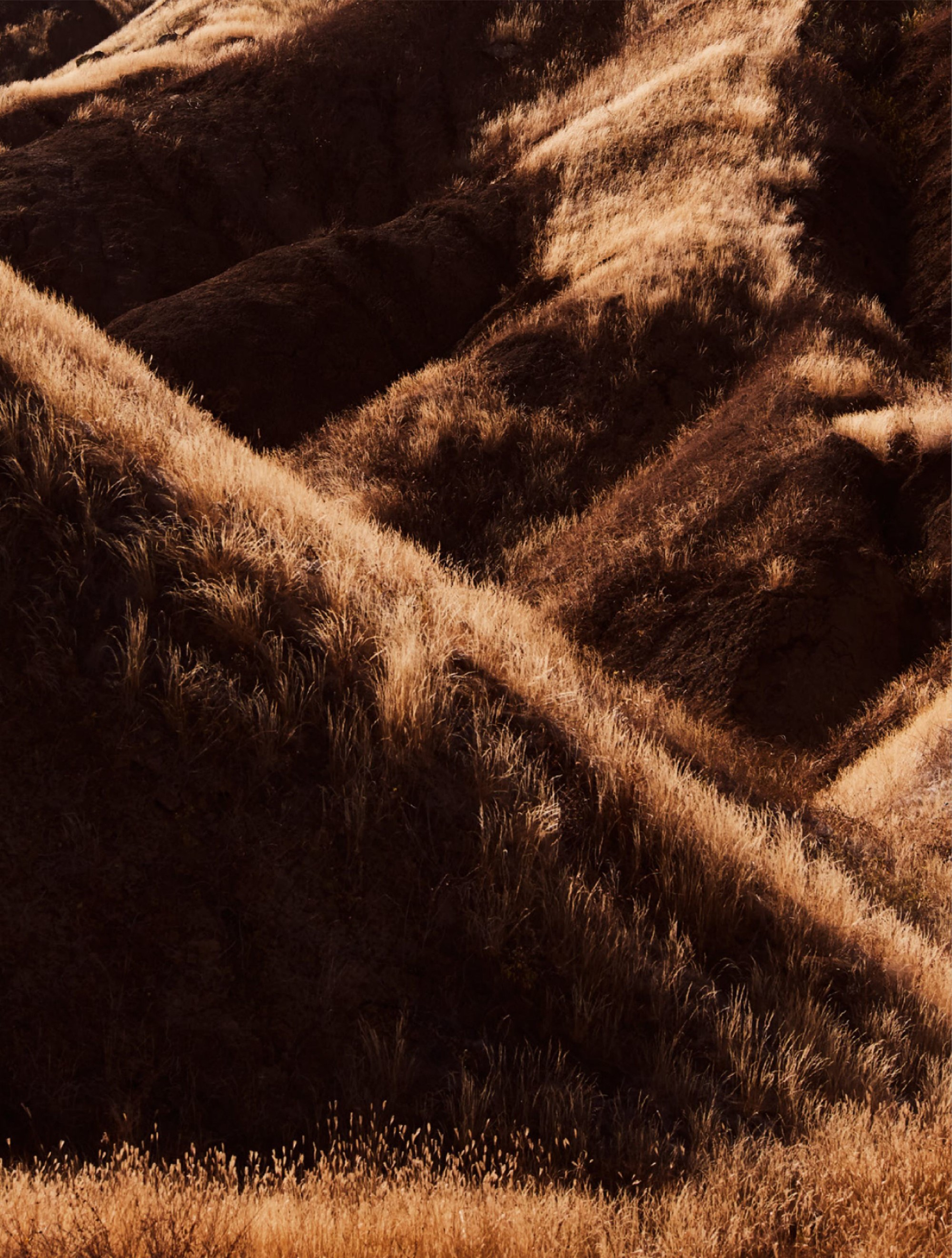 Mara Kasanpawiro by Jeroen Mantel for ELLE Netherlands (5).jpg