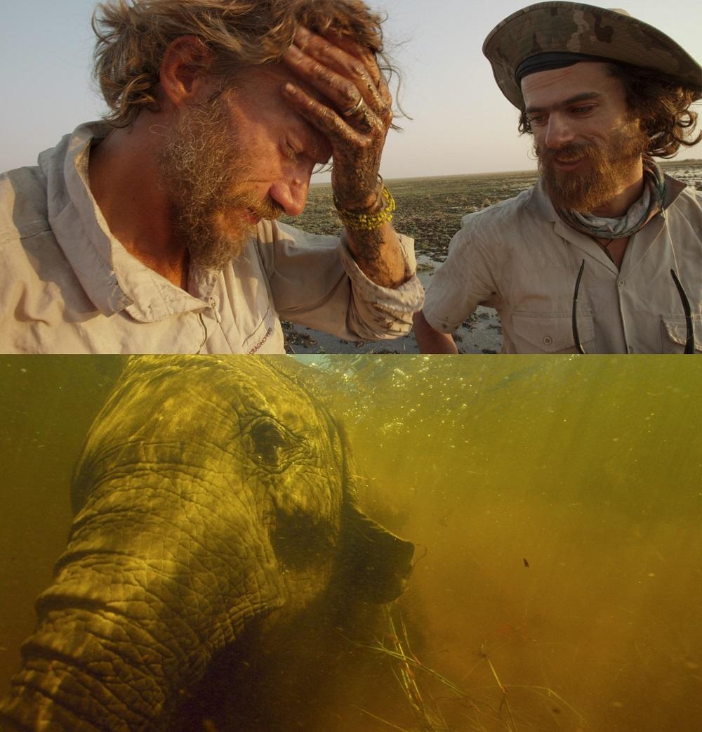 Into-the-Okavango_[Neil-Gelinas]_3-dbl.jpg