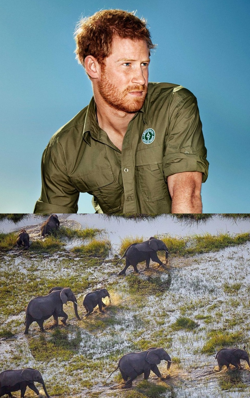 Prince+Harry+by+Alexi+Hay+for+Town+&+Country+Okavango+Documentary.jpg