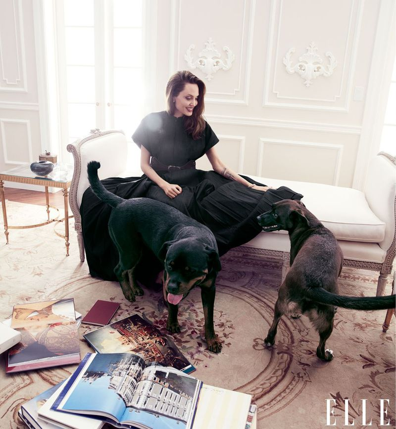 Angelina with her dogs, a Rottweiler and a pit mix chosen as puppies from a shelter by her eldest sons. Dress and belt, Dior. Bracelets, Cartier. Pumps, Jimmy Choo. Vintage earrings. Angelina Jolie by Alexi Lubomirski.