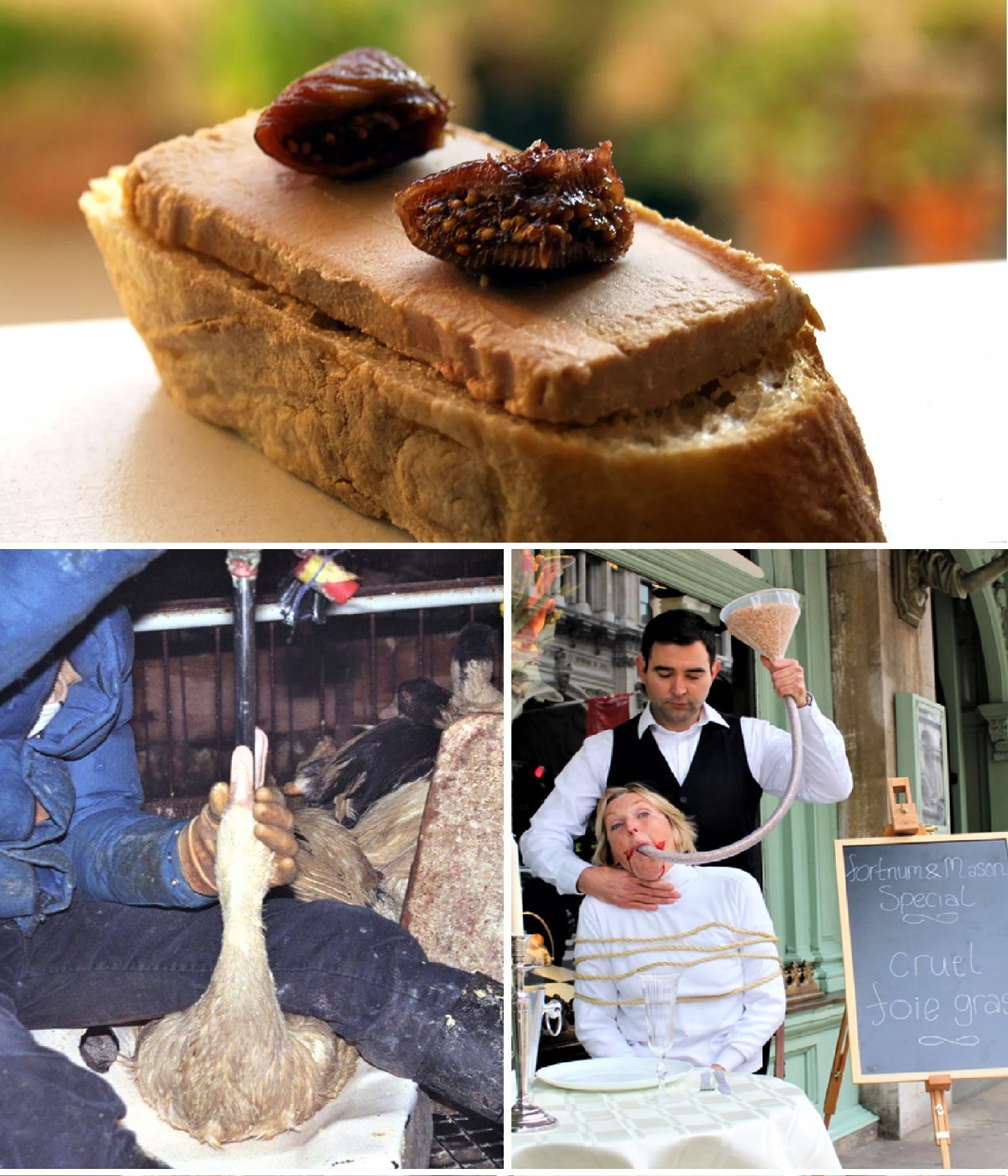 New York City is set to ban foie gras from restaurants and shops.jpg