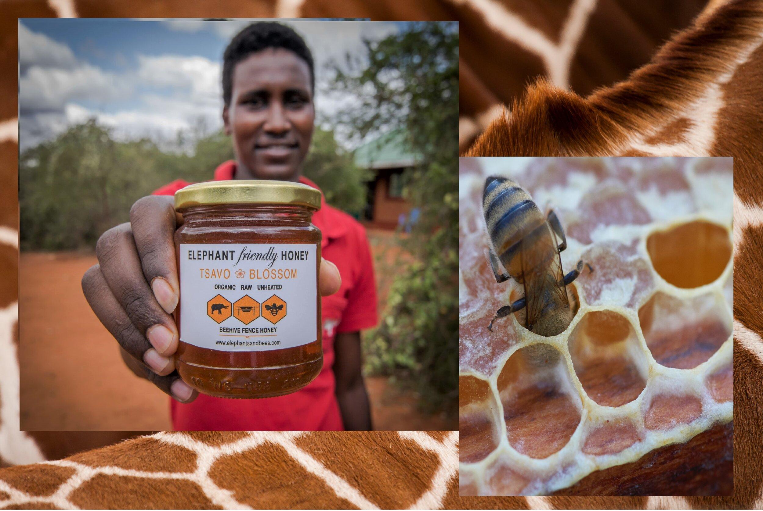 Elephant-friendly-honey-Kenya.jpg