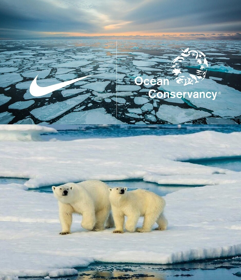 Nike Arctic Pledge Ocean Conservancy.jpg