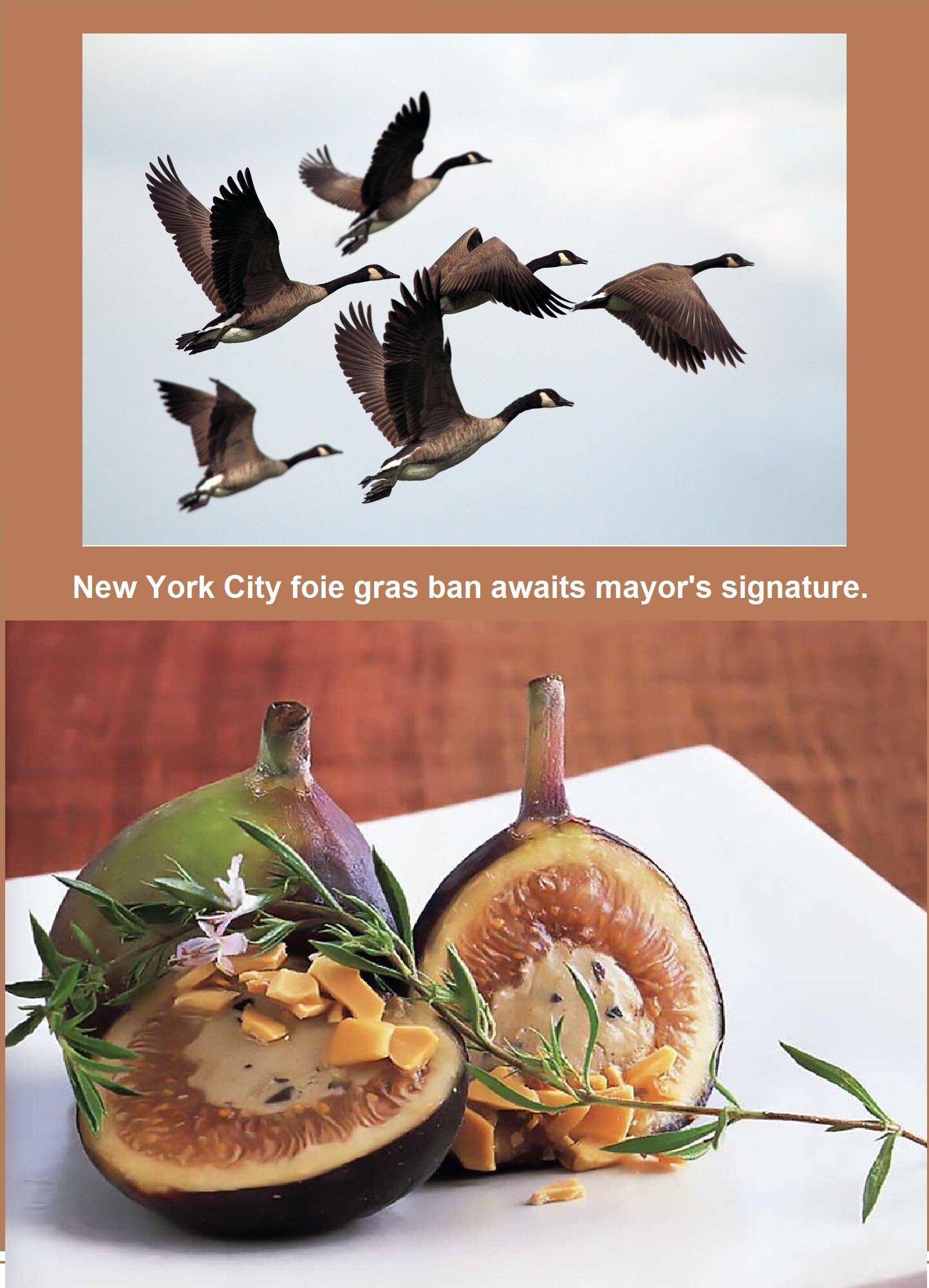 Image Credits: Top Photo by  Gary Bendig  on  Unsplash ; Bottom  Culinaria.