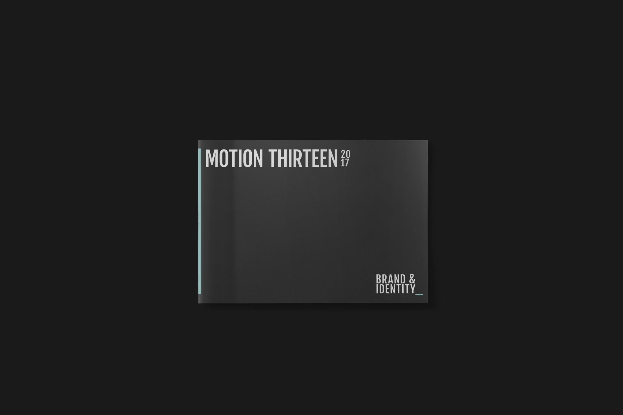 motion13_6.jpg