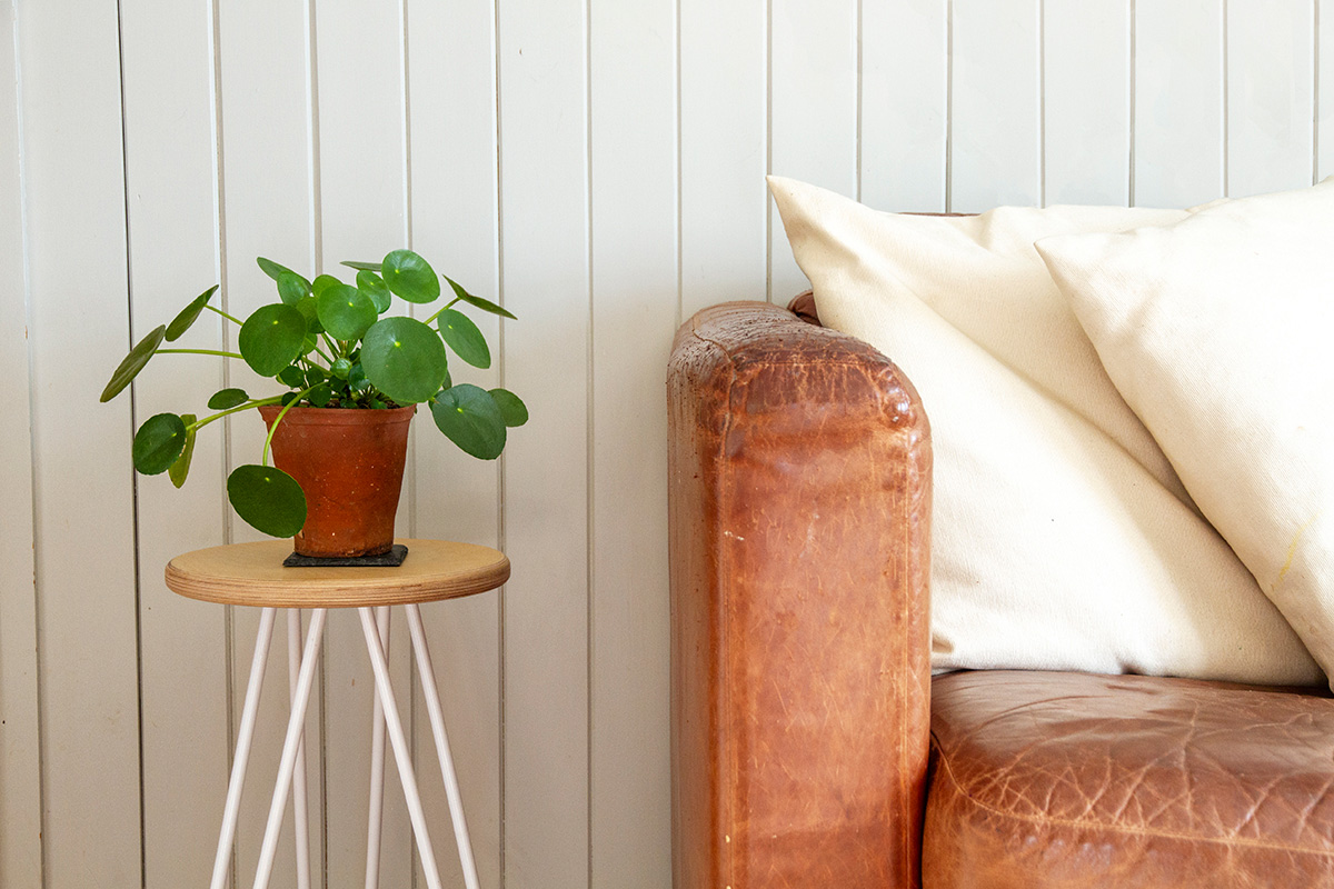 Cord_Industries_hairpin_leg_stool_sidetable_pannelled_wall_pilea_web.jpg