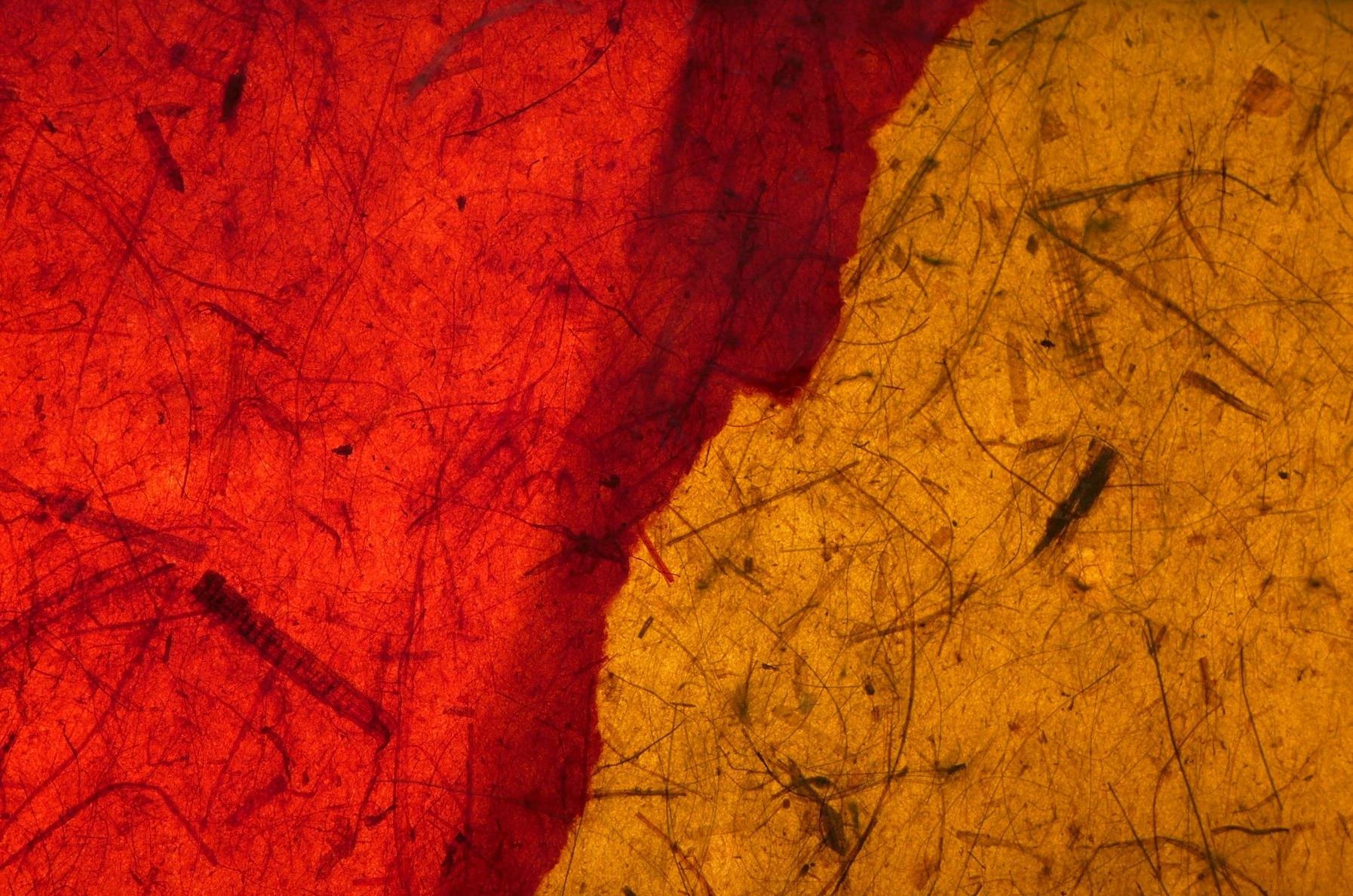 Red & Yellow Thai banana paper lit.jpg