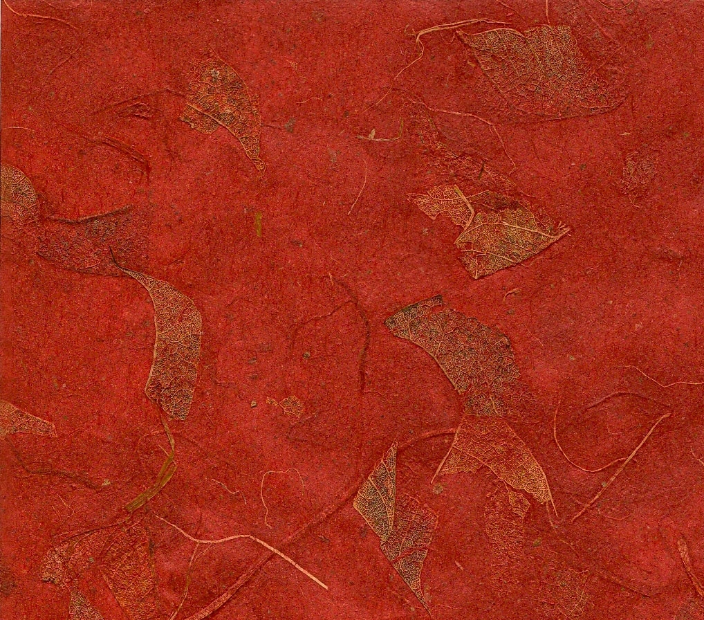 mango paper red (mvpaper.com).jpg