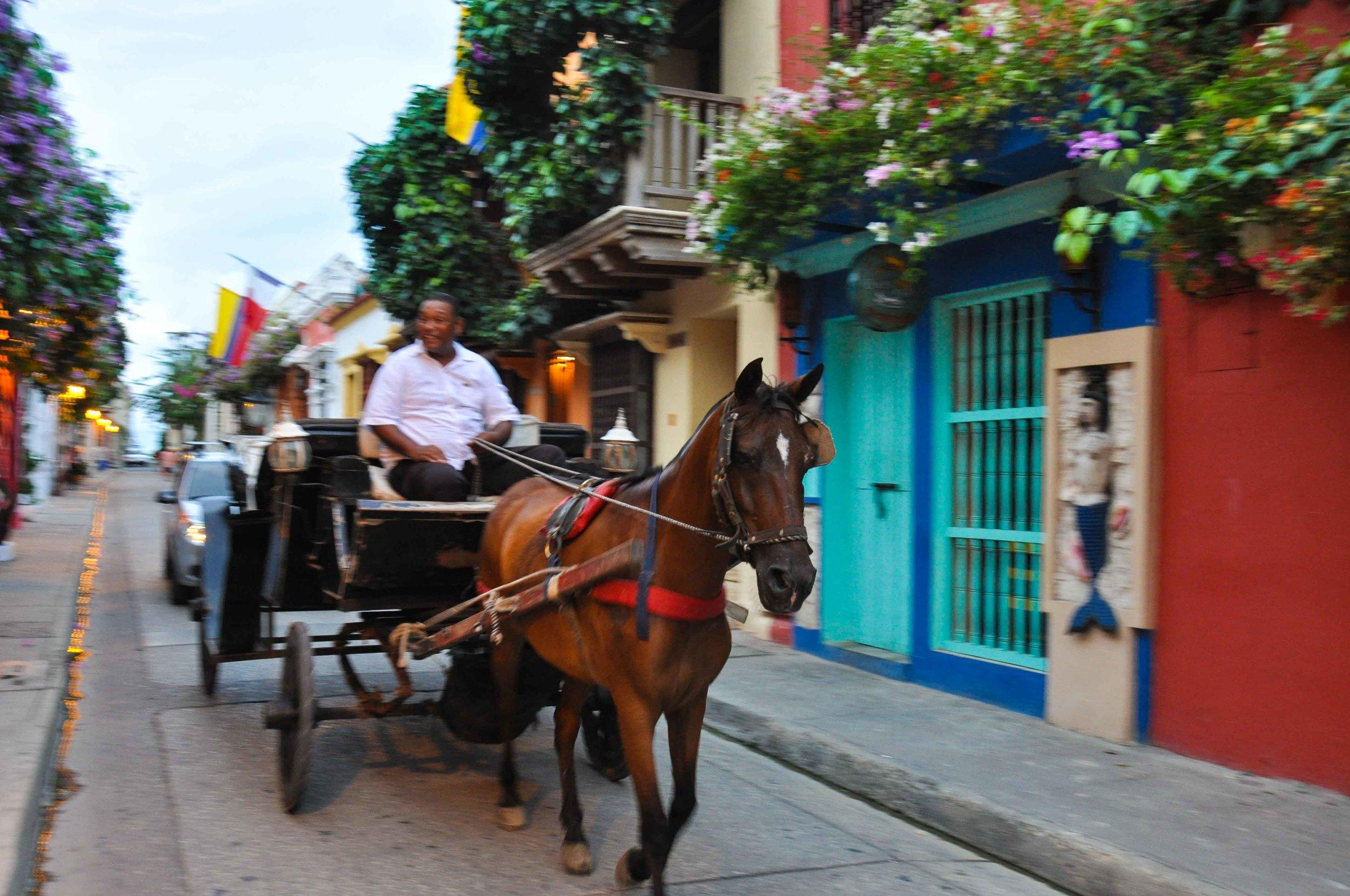 2015_10_Cartagena_s-17.jpg