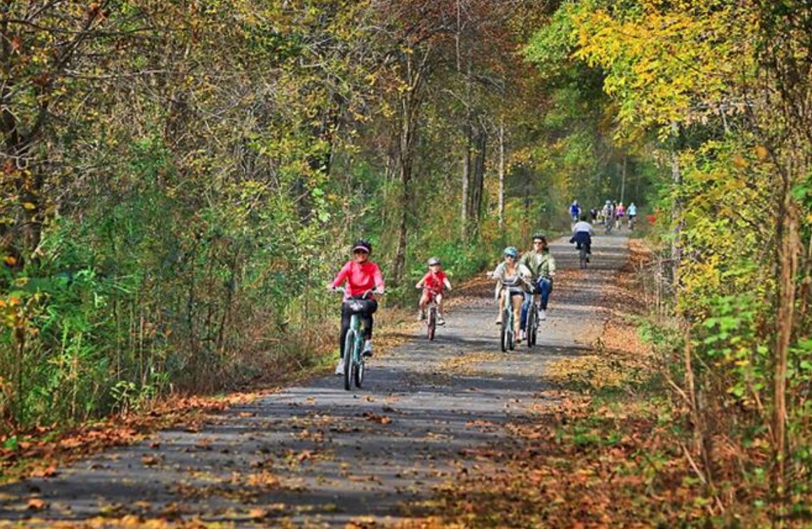 Bike the Swamp Rabbit Trail - 20+ miles of paved cycling and walking trails, known affectionately as the Swamp Rabbit Trail, cut directly through Downtown Greenville and provide residents with beautiful scenery along the Reedy River.More info