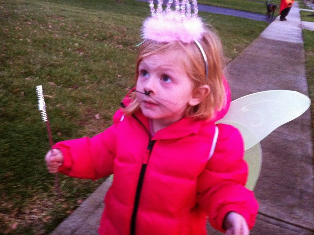 "While some toddlers choose to be Cinderella, she created ""Fairy Princess Meow"""
