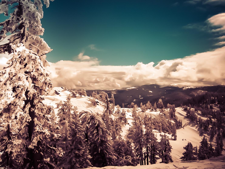 Diamond Peak Backcountry