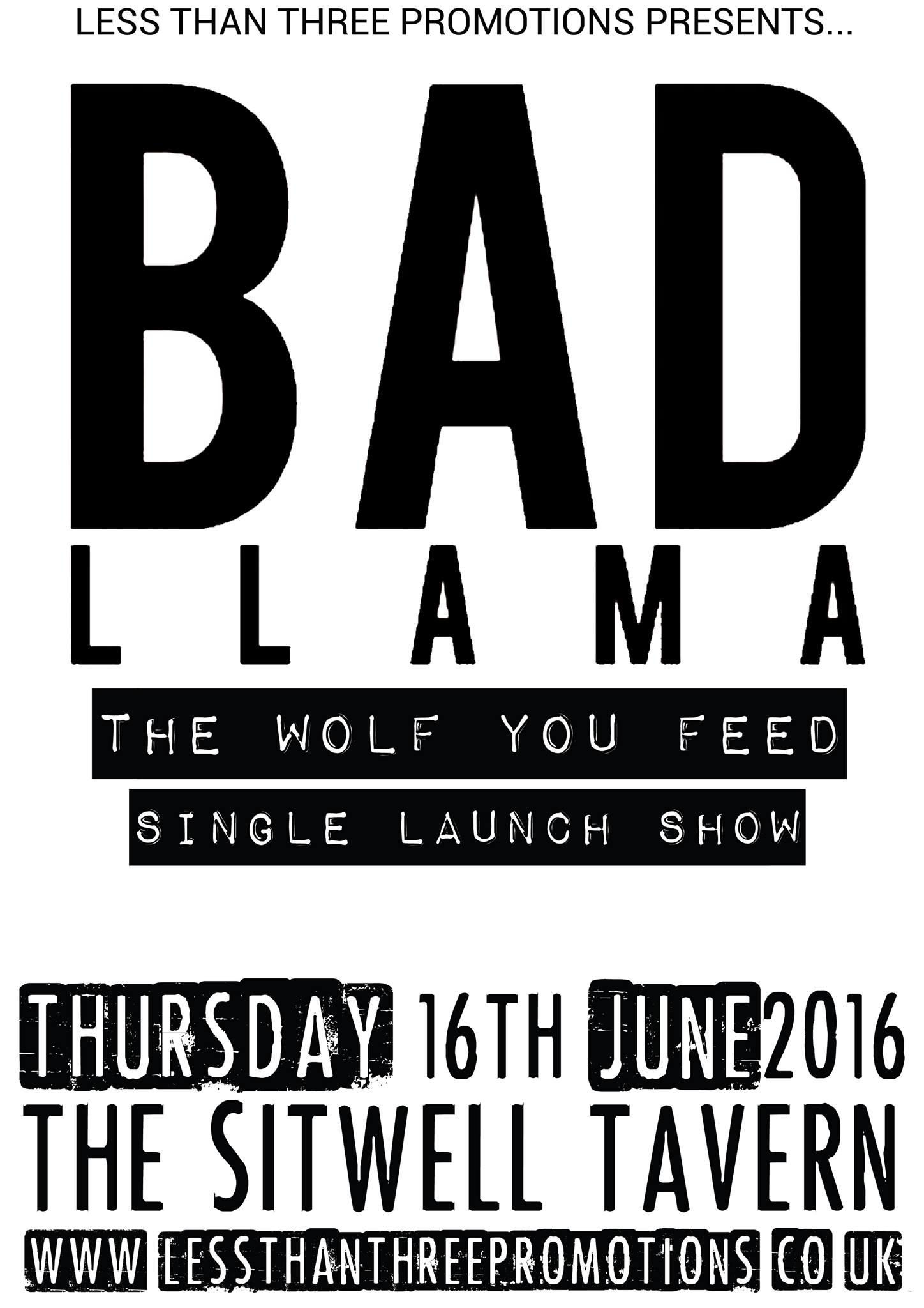 Bad Llama Derby.jpg