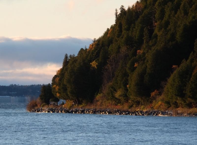 Fall shore.JPG