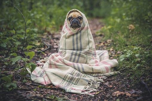 ......It's not warm when she's away.......🎤