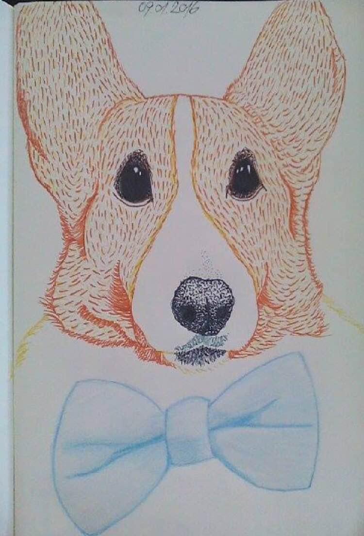 Drawing by Radu from Romania