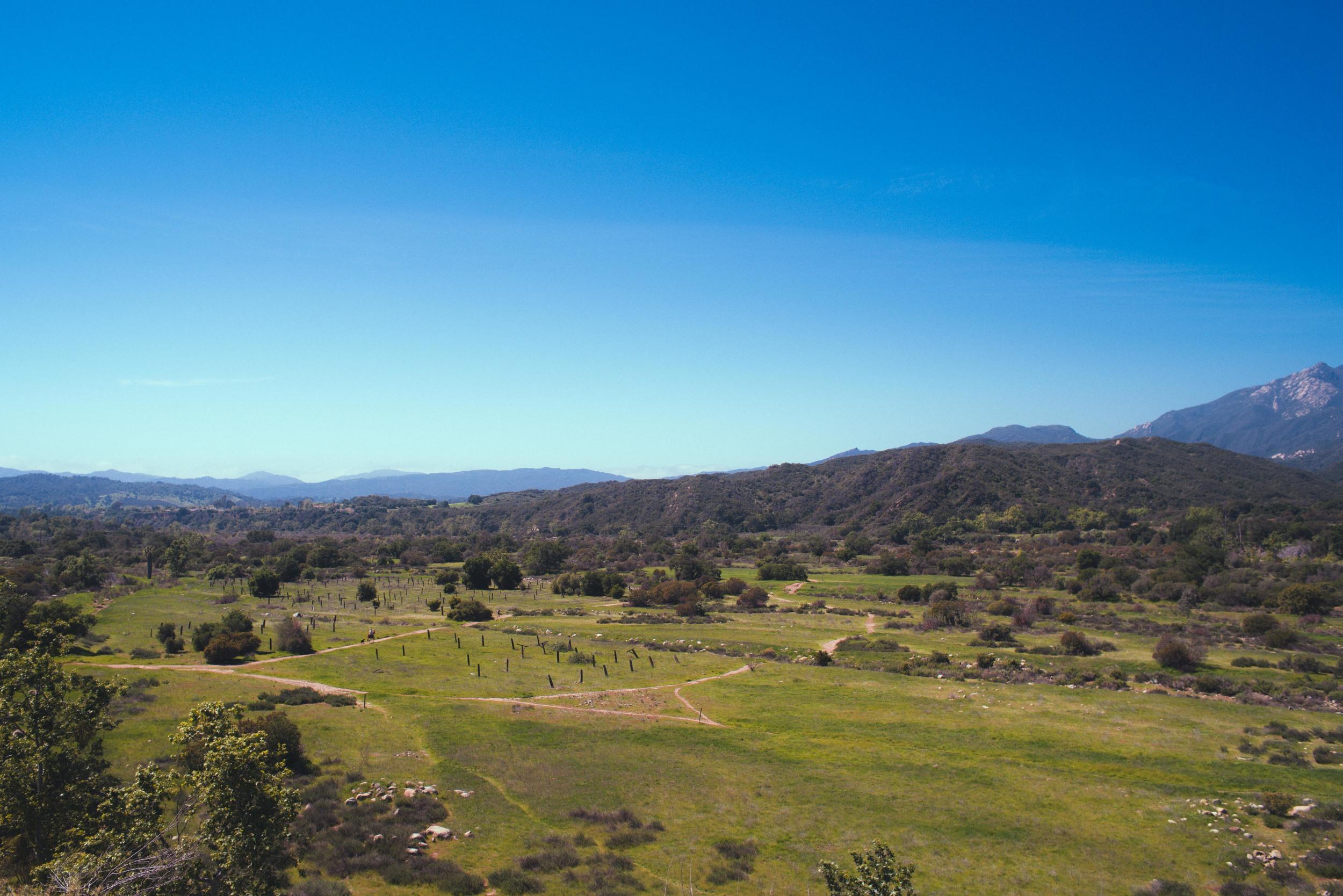 Ranch Runner.jpg