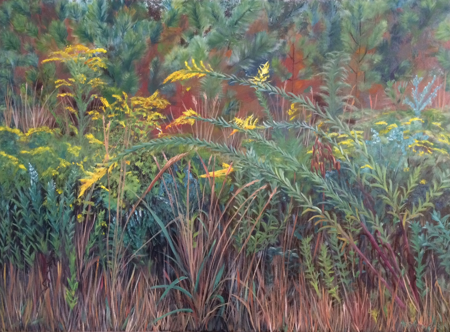 Autumn Scape  oil on canvass; 22 x 30 2016  400.00
