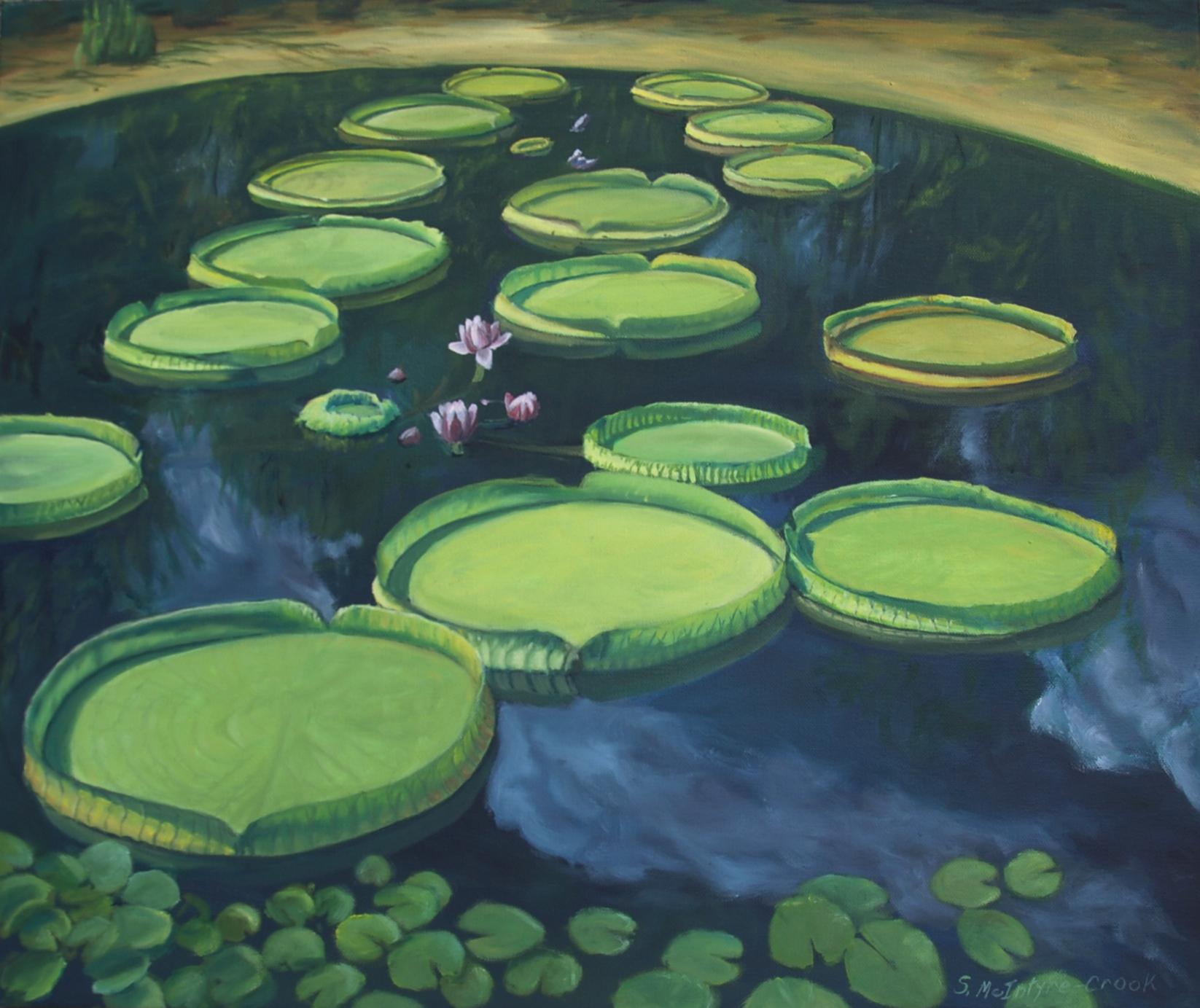 Victorian Lilies at Kanapaha Garden  oil on canvass; 20 x 24; 2015  $300.00