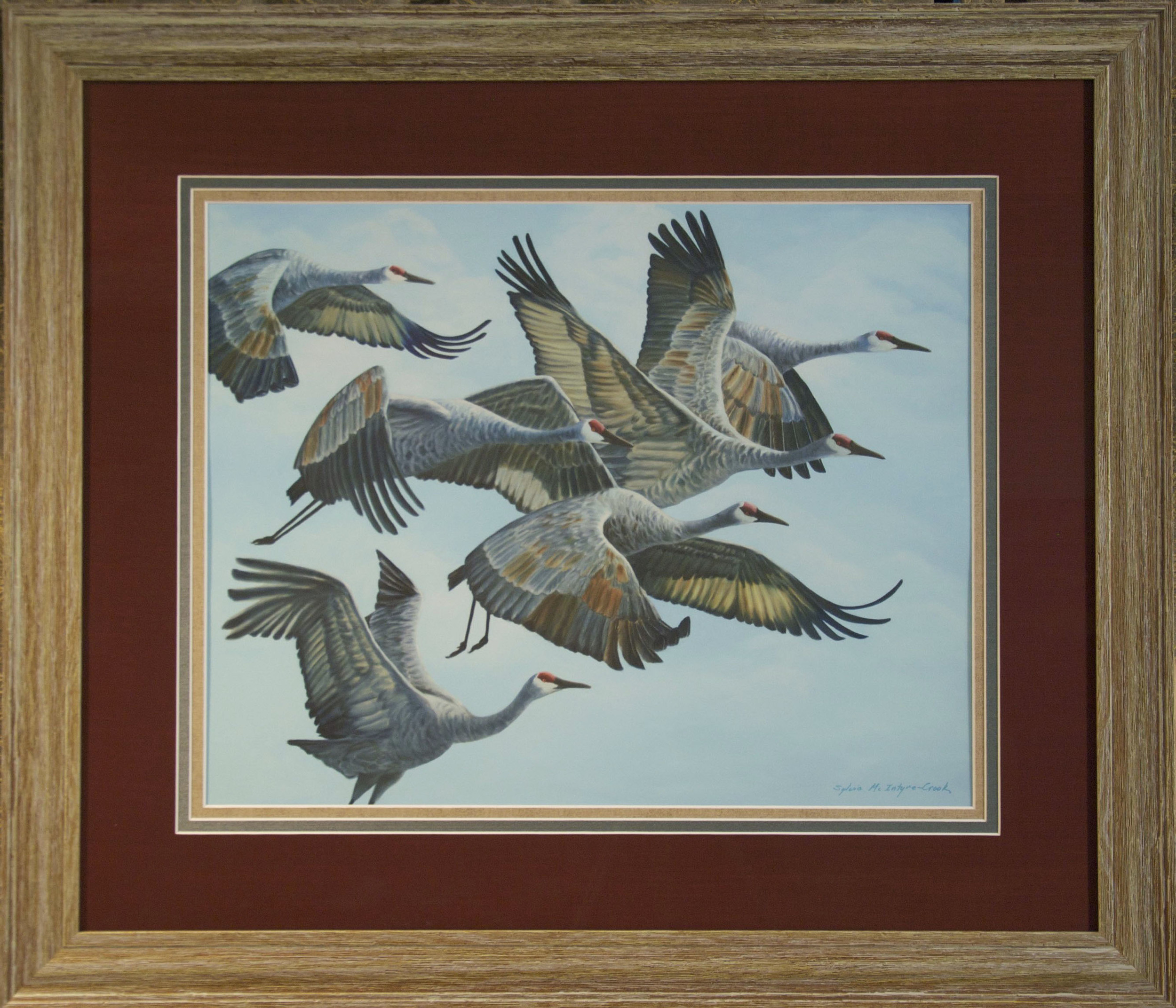 """Limited Edition Print: Sandhill Cranes in Flock, Aloft II; #2 of 30  print: 18"""" x 23""""; frame: 29.5"""" x 34""""; Ultrachrome HDR ink;  from original oil on canvass 'Sandhill Cranes in Flock, Aloft II'; 60x48  $550.00"""