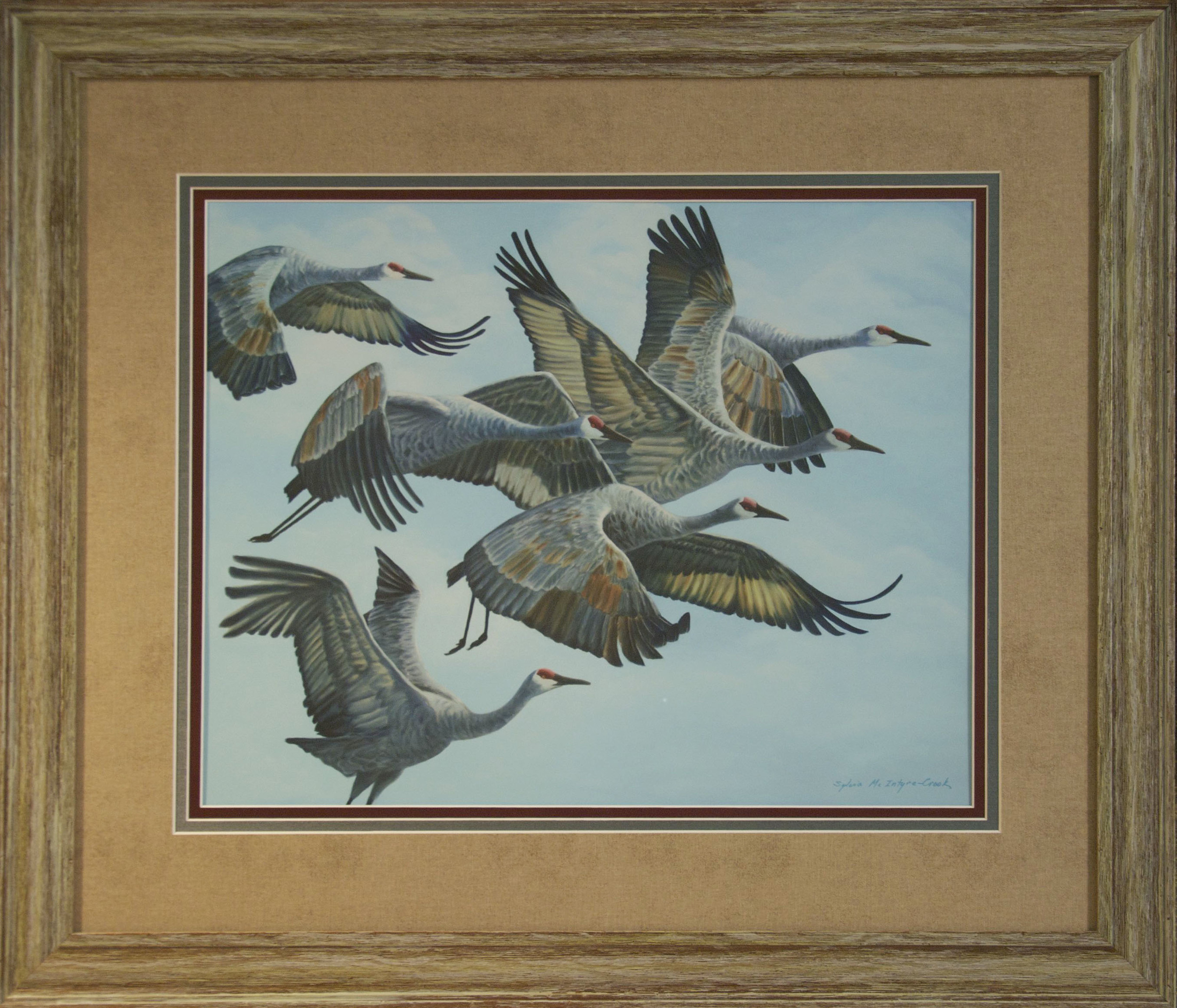 """Limited Edition Print #1 of 30: Sandhill Cranes in Flock, Aloft II  print: 18""""x23""""; frame: 29.5""""x34""""; Ultrachrome HDR ink  from original oil on canvass 'Sandhill Cranes in Flock, Aloft II; 60 x 48  $550.00"""