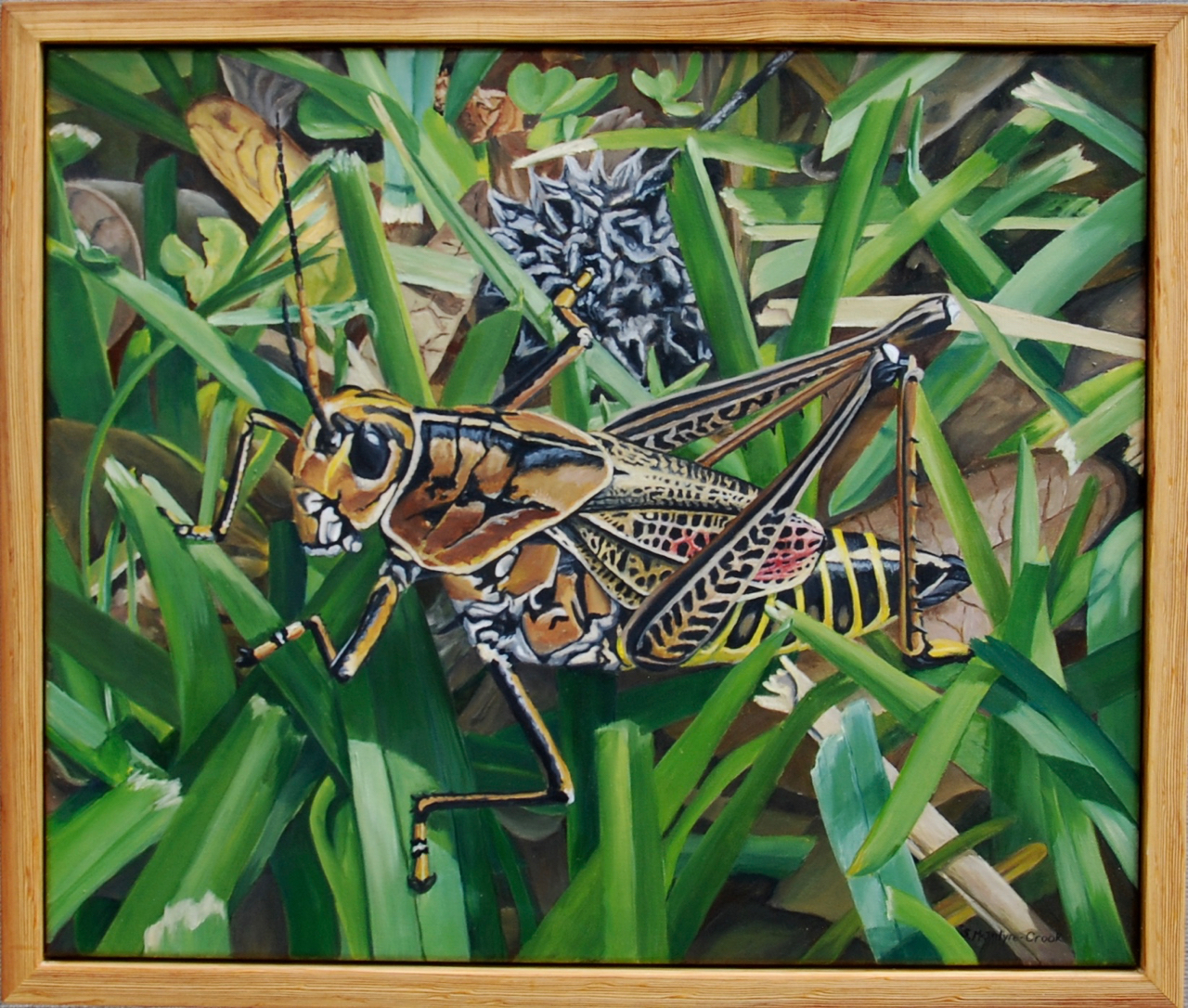Grasshopper and Her Sweetgum Ball  oil on canvas; 20x24 plus frame; 2017  $400.00